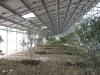 monofalda_interna_con_piante